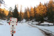 20170203 Sulle nevi della Val di Non 3-4-5 Febbraio 2017